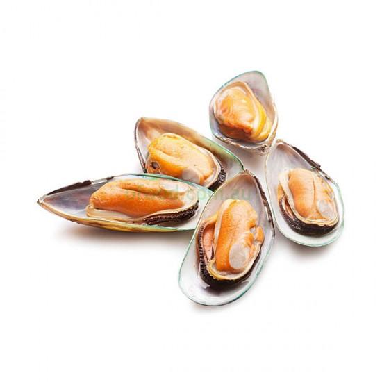 NZ Greenshell Mussel Half Shell Per Kg